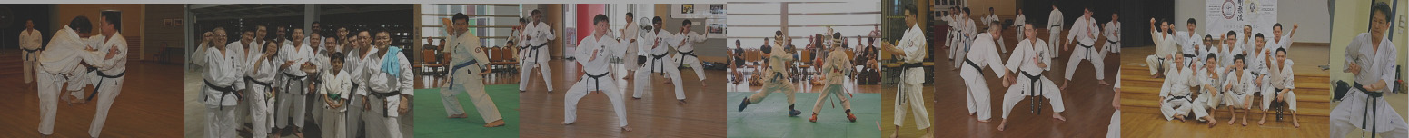 Goju-Ryu Karate-do Association Singapore